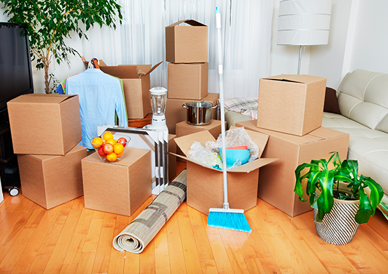 Moving in / Move out cleaning service